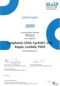 2020 Zertifikat&Auswertung Lymphome s-1