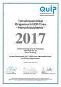 Zerti 12 2017 2-2018-5